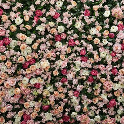 Květinové pozadí 2